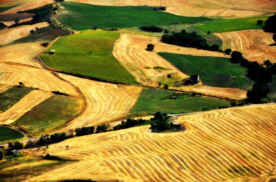Colline di Castelnuovo della Daunia (Fg) (4044 clic)