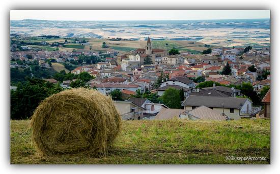 Castelnuovo della Daunia (Fg) (308 clic)
