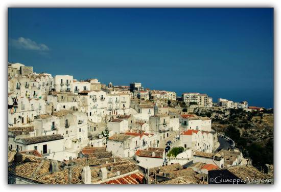 Panoramica sul mare - Monte sant'angelo (1282 clic)