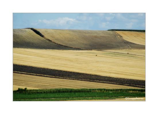 Daunia - Castelnuovo della daunia (378 clic)