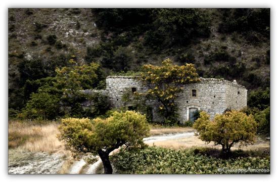 Paesaggio rurale  - Castelnuovo della daunia (1335 clic)