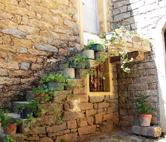 vecchio borgo di Gavoi (2572 clic)