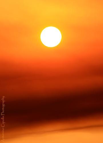 Sole di Luglio (246 clic)