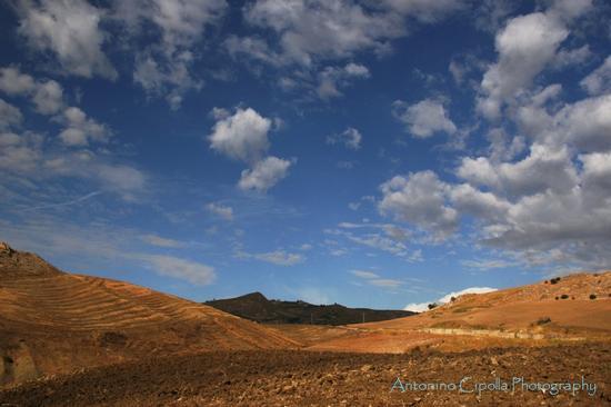 Terra di Sicilia (933 clic)