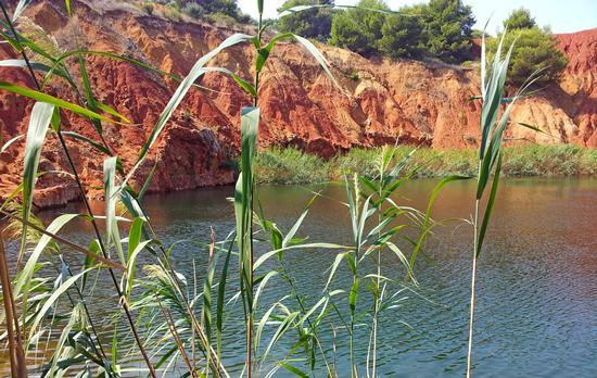 Ex cava! - Otranto (1121 clic)