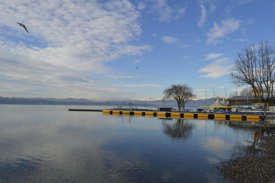 lago di Varese (469 clic)