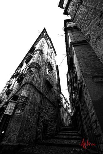 Via del Liceo - Cosenza (2526 clic)