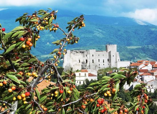 Ciliegie sotto.......il Castello - Moliterno (3109 clic)