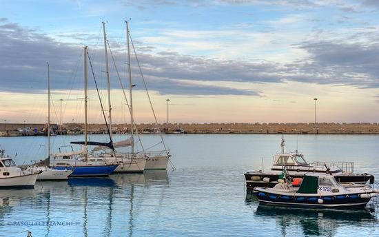 Sull'acqua - Vasto marina (3138 clic)