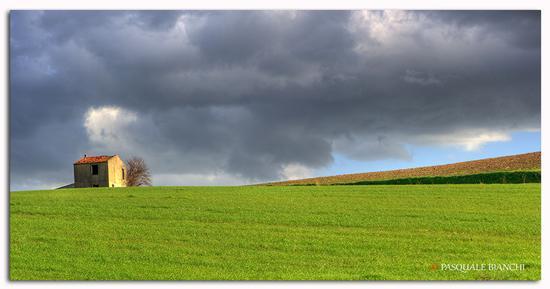 Prima del temporale (434 clic)