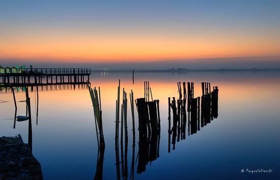Tramonto - Lesina marina (593 clic)