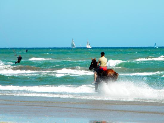 In riva al mare - Rimini (1721 clic)
