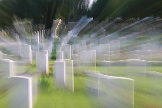 anime - Forlì (2068 clic)