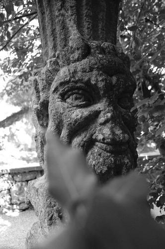 Parco dei Mostri  - Bomarzo (1237 clic)