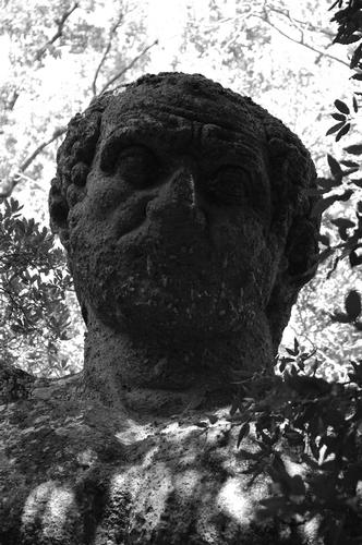 Parco dei Mostri  - Bomarzo (1164 clic)