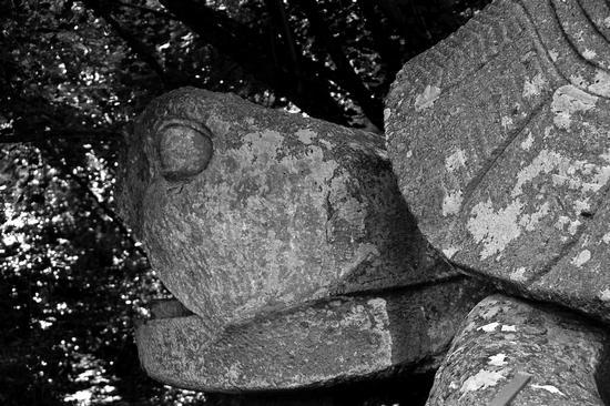 Parco dei Mostri  - Bomarzo (1074 clic)