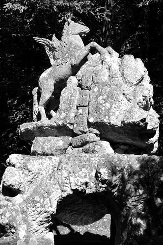 Parco dei Mostri  - Bomarzo (1318 clic)
