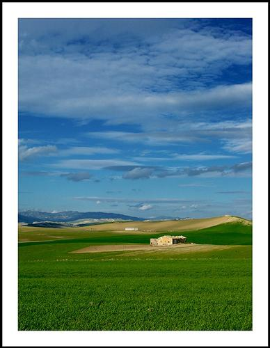 campagna siciliana - Raddusa (4976 clic)