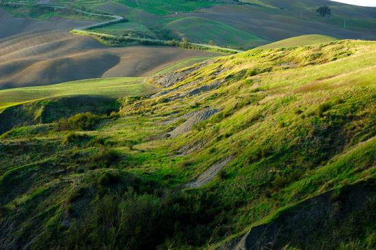 Crete Senesi - Asciano (4389 clic)
