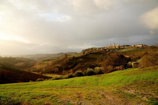 San Gimignano (2981 clic)