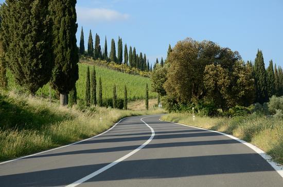 La via Cassia - Montalcino (3346 clic)