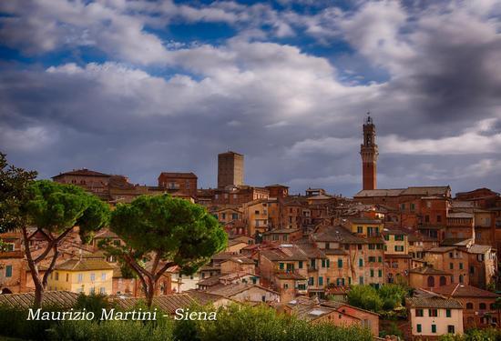 Siena (1704 clic)