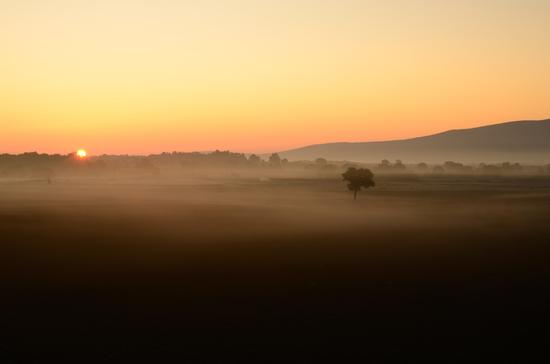 I colori dell'alba - Poggibonsi (3542 clic)