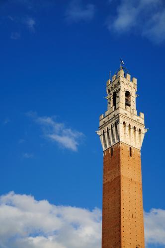 Torre del Mangia - Siena (2437 clic)