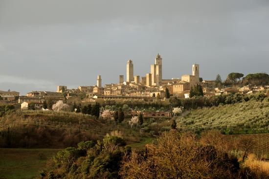 San Gimignano (2492 clic)