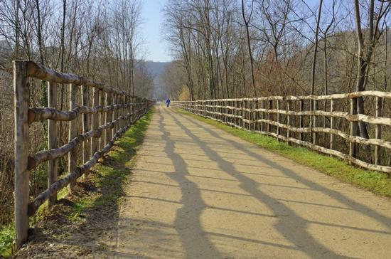 Linee Guida - Colle di val d'elsa (2625 clic)
