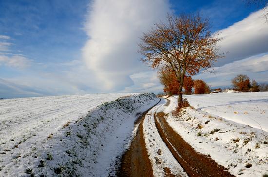 La quiete dopo la tempesta - Monteriggioni (4865 clic)
