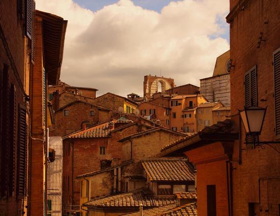 TETTI - Siena (2565 clic)