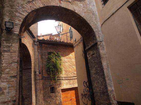 vicolo del centro storico di Siena (1904 clic)