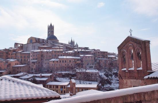 Neve , tetti , sole .. - Siena (1849 clic)