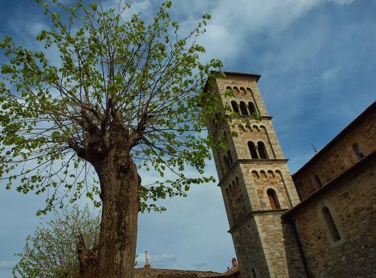 Chiesa romanica a Castellina in Chianti (2384 clic)