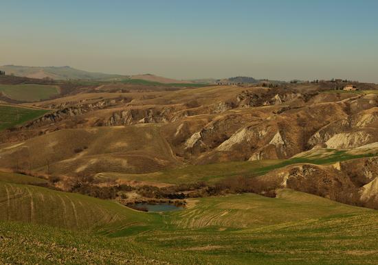 Il paesaggio senese nelle crete. - Rapolano terme (1818 clic)