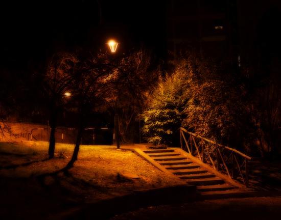 Giardino , passeggiando la sera. - Siena (2226 clic)