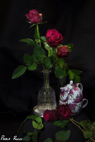 Natura morta  con rose e cristalli - Siena (1373 clic)