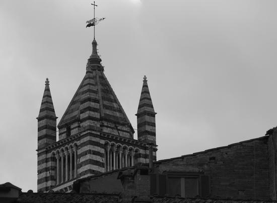 Cima del campanile del  duomo di Siena  (2064 clic)