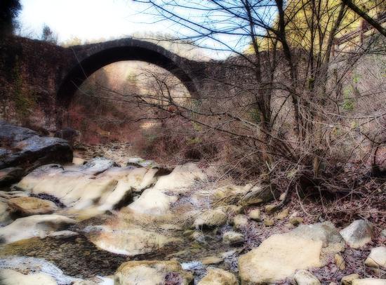 Ponte della Pia dei Tolomei  - Rosia (3797 clic)
