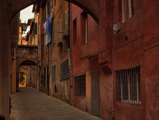 Il piccolo e colorato vicolo   della  Palla a corda  - Siena (2676 clic)