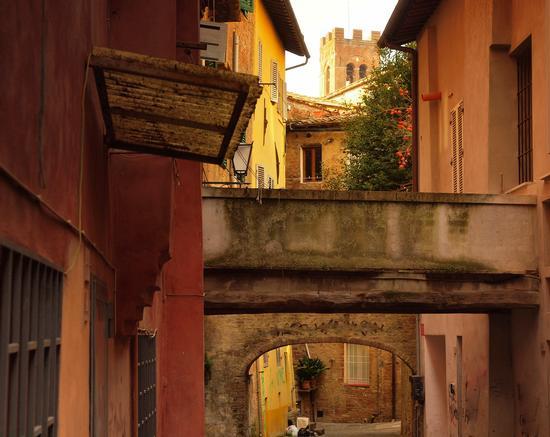 Il colorato vicolo dell  - Siena (1551 clic)