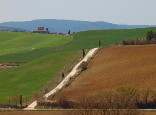 Paesaggio  Toscano in Val d'Arbia - Monteroni d'arbia (2607 clic)