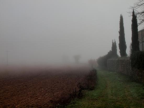 Nebbia a Ponte Allo  Spino - Sovicille (2510 clic)