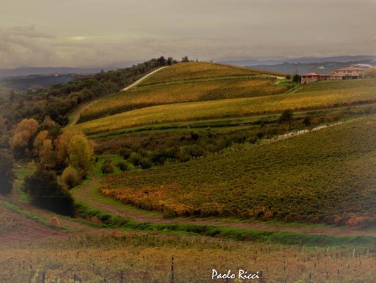 I colori del Chianti nonostante le nuvole . - Castello di brolio (4004 clic)
