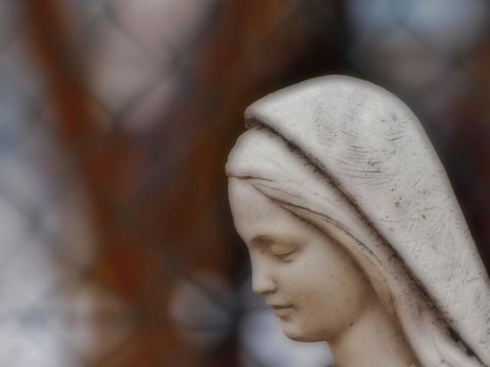 Vergine  vicino casa - Siena (1977 clic)