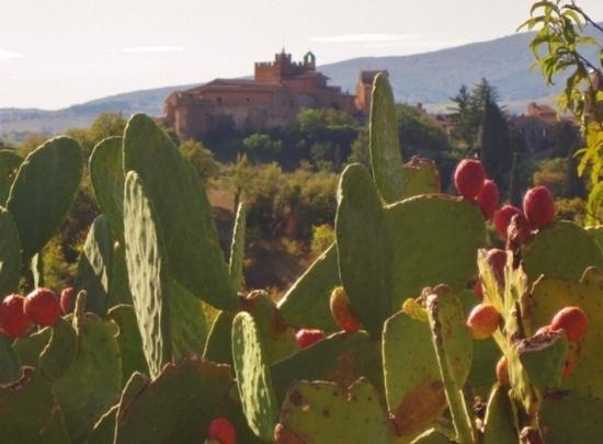 Borghi medievali in Toscana, Certaldo Alto (FI) (1056 clic)