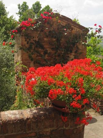 Primavera in Toscana - CERTALDO - inserita il 19-Dec-11
