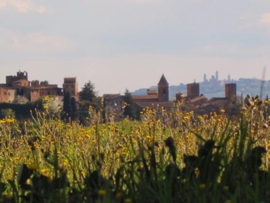 La Toscana di borgo in borgo: Certaldo Alto e San Gimignano (1435 clic)