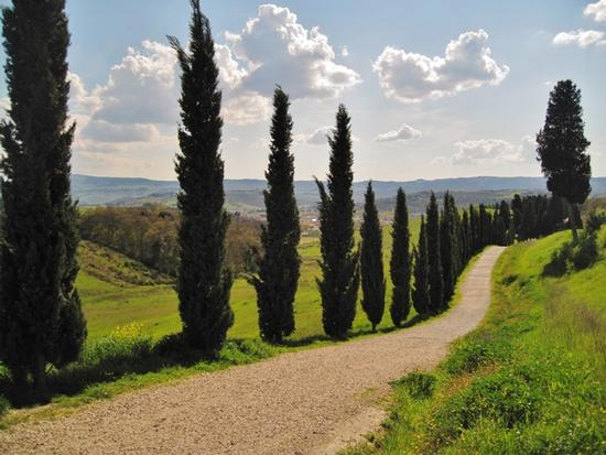 Borghi medievali in Toscana, Certaldo Alto (Firenze) (3518 clic)